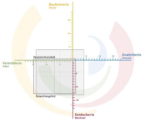 Analysetool im Coaching und in der Beratung